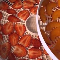 Deshidratando Frutas